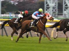 20171118 東京10R ユートピアS(牝1600) レーヌドブリエ 15