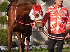 20170114 京都10R 北大路特別 4歳上牝馬1000万下 レーヌドブリエ 09