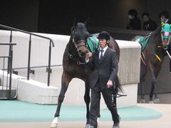 20170205 東京11R 東京新聞杯(G3) プロディガルサン 02