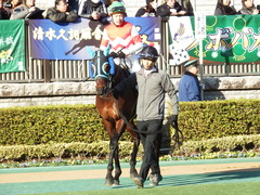 20180128 東京10R 早春S(1600) トレジャーマップ 12