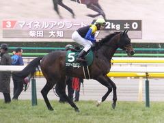 20170205 東京11R 東京新聞杯(G3) プロディガルサン 18