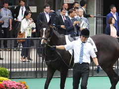 20160605 東京4R 3歳未勝利 ツボミ 16