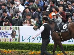 20161127 東京8R シャングリラ賞 ツクバアスナロ 07