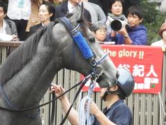 20181013 東京9R プラタナス賞 2歳(500) ロークアルルージュ 11