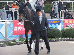 20140126 中山10R ゴールウェイ 06