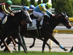20170506 東京5R 3歳牝馬500万下 ビルズトレジャー 20