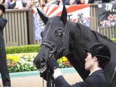 20141102 東京11R 天皇賞(秋) サトノノブレス 06