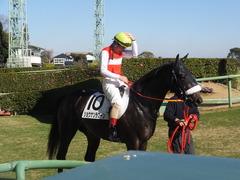 20131221 中山競馬場 ショウナンラグーン 18