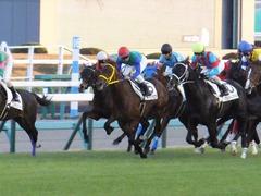 20161210 中山12R (500) トーセンカナロア 15
