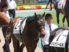 20140531 東京6R オウケンブラック 07
