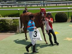 20150425 京都4R 3歳未勝利 レーヌドブリエ 19