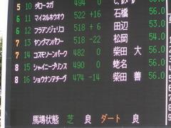 20150913 中山11R 京成杯AHC(G3) ショウナンアチーヴ 02