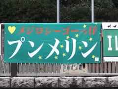 20161030 東京1R 2歳未勝利 プンメリン 01