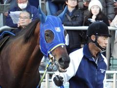 20171209 中山9R 霞ヶ浦特別(1000) ラッシュアタック 09