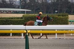 20200215 東京11R クイーンC(G3) 3歳牝馬OP ホウオウピースフル 23