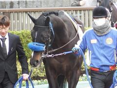 20180128 東京4R 3歳未勝利 ミッキーバード 03