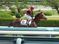 20170603 阪神3R 3歳未勝利 フェアチャイルド 31