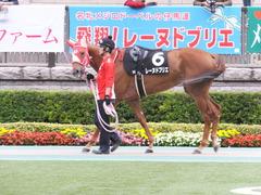 20151010 東京9R 山中湖特別 レーヌドブリエ 04