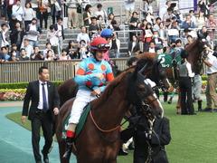 20161008 東京11R サウジアラビアRC(G3) クライムメジャー 13