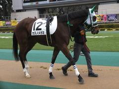 20160130 東京3R 3歳未勝利 カズノメガミ 06