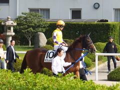 20151024 京都1R 2歳未勝利 サクレメジャー 11