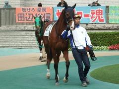20181124 東京3R 2歳未勝利 ストレートパンチ 05