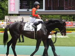 20150523 東京3R 3歳未勝利 コスモポッポ 12