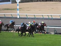 20141206 中京11R 金鯱賞(G2) サトノノブレス 16