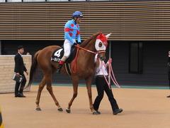 20160409 中山9R 野島崎特別 (1000牝) レーヌドブリエ 19