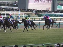 20141228 中山10R 有馬記念 サトノノブレス 12