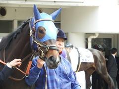 20180318 中山1R 3歳牝馬未勝利 ラプターゲイル 07