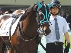 20141011 東京7R トレジャーマップ 04