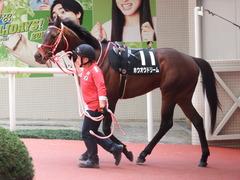 20180401 阪神10R 御堂筋S(1600) ホウオウドリーム 03