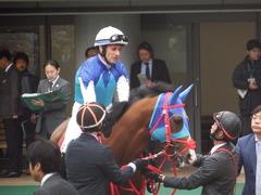 20190427 東京11R 青葉賞(G2) アドマイヤスコール 12