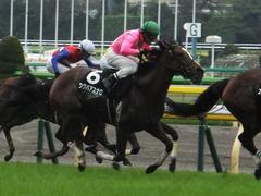 20161008 東京9R 山中湖特別(牝1000) ツクバアスナロ 17