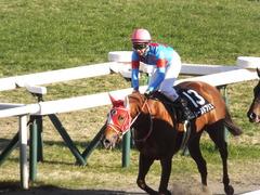 20170114 京都10R 北大路特別 4歳上牝馬1000万下 レーヌドブリエ 23