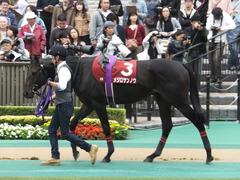 20141012 東京8R 東京HJ メジロサンノウ 07