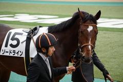 20191124 東京5R 2歳メイクデビュー ソードライン 04
