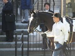 20170128 東京4R 3歳未勝利 バトルオスカー 02