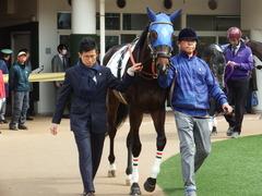 20180318 中山1R 3歳牝馬未勝利 ラプターゲイル 03
