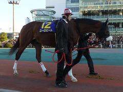 20151229 大井10R 東京大賞典 (G1) ユーロビート 11