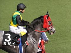 20170430 東京11R スイートピーS 3歳牝馬OP ミザイ 14