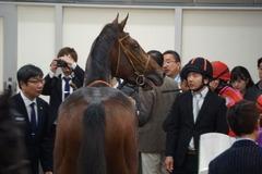 20191124 東京5R 2歳メイクデビュー ソードライン 30