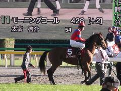 20121110 重賞挑戦 リメンバーメジロ 02