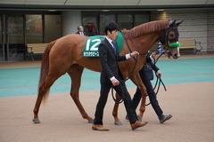 20200215 東京11R クイーンC(G3) 3歳牝馬OP ホウオウピースフル 02