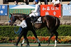 20191102 東京9R 南武特別(2勝クラス) ミッキーバード 17