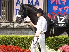 20150628 東京11R パラダイスS ショウナンアチーヴ 05
