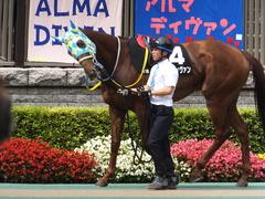 20150628 東京11R パラダイスS アルマディヴァン 06