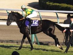 20161225 中山12R 有馬記念(G1) サトノノブレス 09
