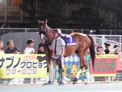 20180919 東京記念(S1) ユーロビート 02